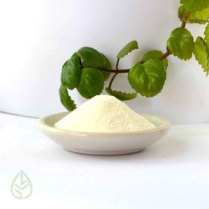 agar agar azucar vegano germina tienda a granel zero waste mexico
